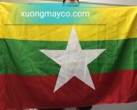 In cờ các nước tại Hà Nội